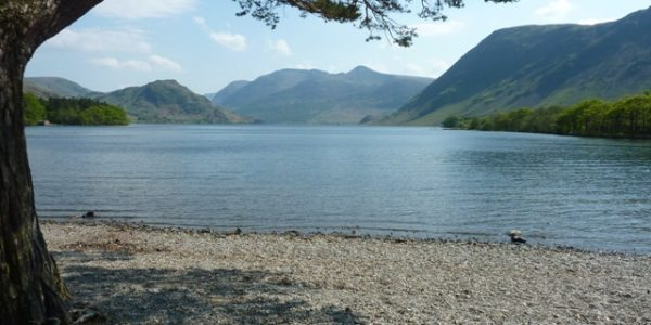 Crummock Water, Lanthwaite Wood